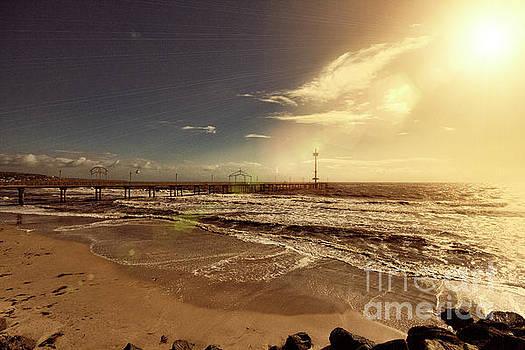 Brighton Beach Pier by Douglas Barnard