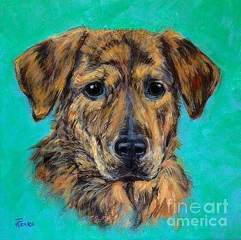 Brindle Mutt by Vickie Fears