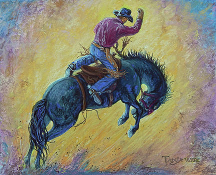 Bronc Buster by Tanja Ware