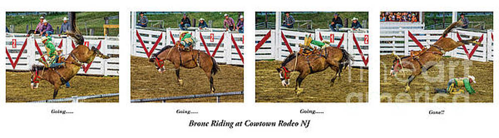 Bronc Riding at Cowtown by Nick Zelinsky