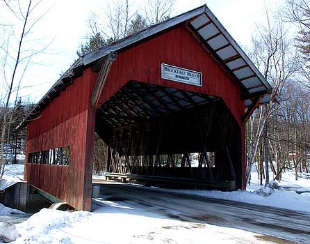 Brookdale Bridge by Dave Olsen