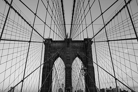 Brooklyn's Web by Joshua Francia