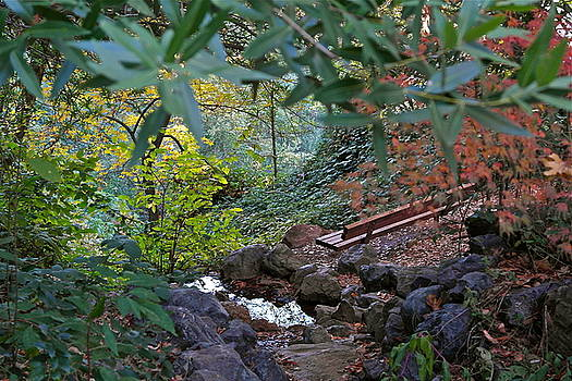 Brookside Hideaway by Michele Myers