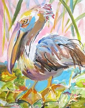 Brown Pelican No. 2 by Delilah  Smith