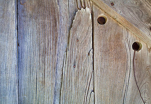 Brown Wood Barn Door by David Letts