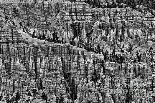 Bryce A lot To look At by Blake Richards