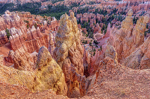 Bryce Canyon Hoodoo Landscape by Pierre Leclerc Photography