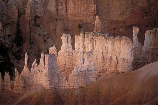 Sandra Bronstein - Bryce Canyon Hoodoos