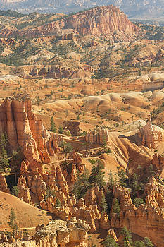 Bryce Canyon by Peter J Sucy