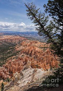 Bryce Canyon Portrait by Peggy J Hughes