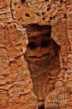 Bryce Canyon Rock Face by Blake Richards