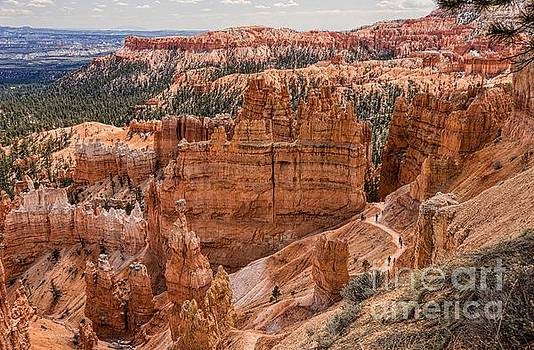 Bryce Canyon Utah by Peggy J Hughes