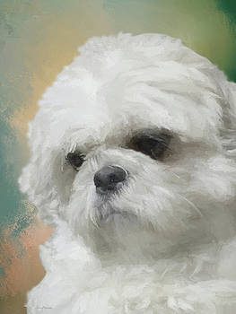 Bubba May 2016-0477-painted by Ericamaxine Price
