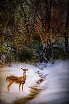 Jai Johnson - Buck At Snowy Creek