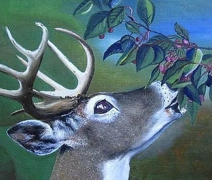 Buck by MaryEllen Frazee