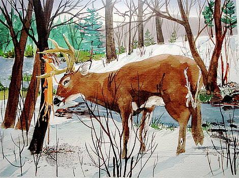 Buck Rub by Bud Bullivant