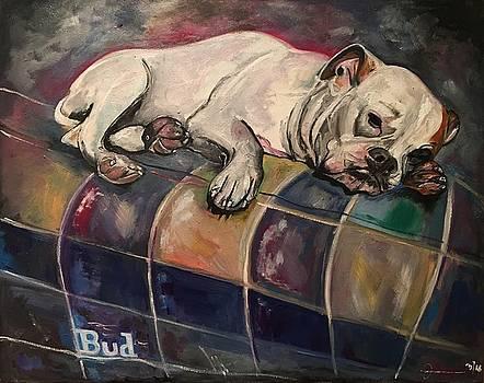 Bud the Stud by John Barth