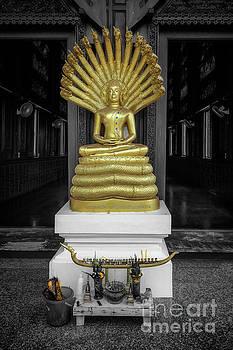Adrian Evans - Buddha And Naga