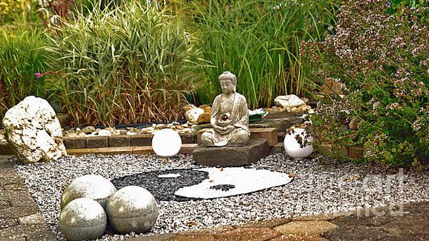 Buddha looks at Yin and Yang by Eva-Maria Di Bella
