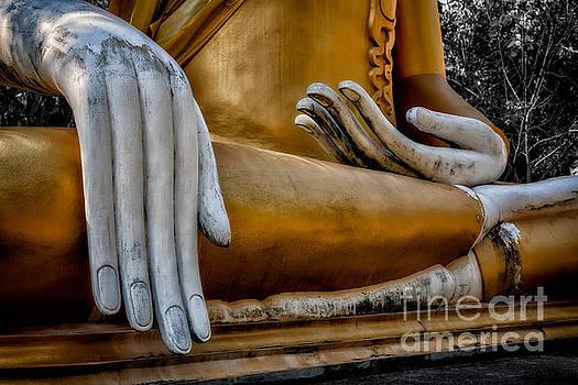 Adrian Evans - Buddhist Statue