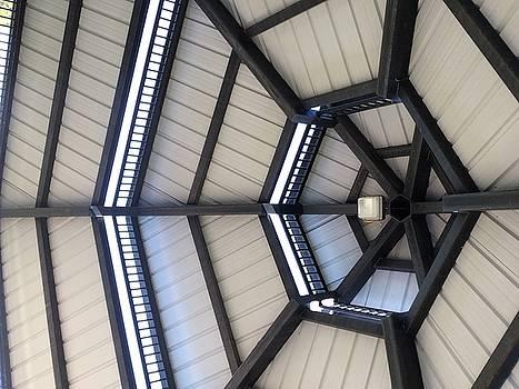 Buffalo Roof by Mark Weber