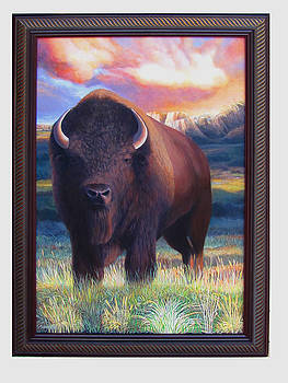 Buffalo Spring...coming of age by Charles Wallis