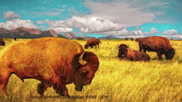 Buffalos on the Range by Sandra Selle Rodriguez