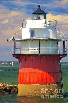 Amazing Jules - Bug Light Plymouth