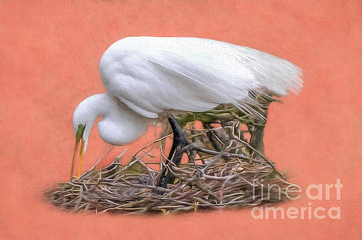 Building A Nest by Marion Johnson