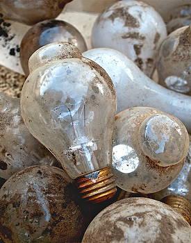 Gwyn Newcombe - Bulb Picking
