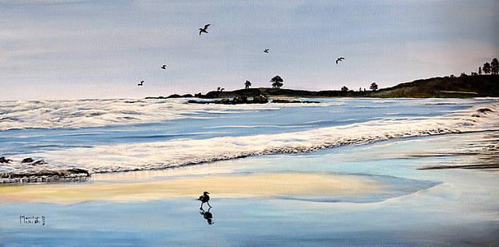Bull Beach by Marilyn McNish