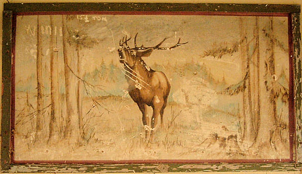 Cindy Nunn - Bull Elk