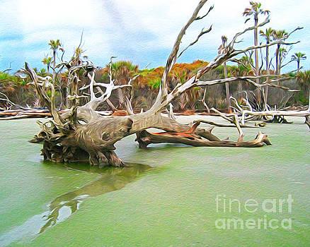 Bull Island Tree by Joseph Re