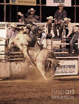 Bull Riding 1 by Natalie Ortiz