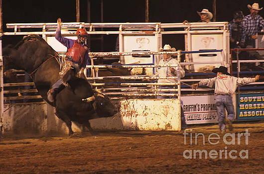 Bull Riding 2 by Natalie Ortiz