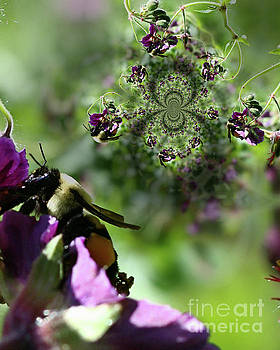 Bumble Bee Abstract by Smilin Eyes  Treasures