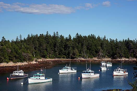 Bunker Harbor Fleet by Bill Morgenstern