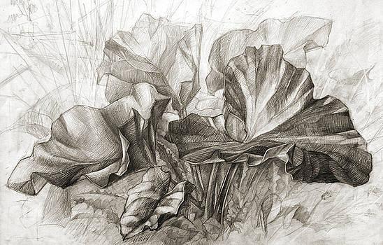 Burdock by Natoly Art