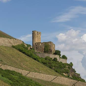 Burg Ehrenfels Squared 02 by Teresa Mucha