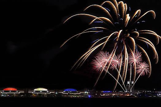 Burst of Fireworks by Andrew Soundarajan