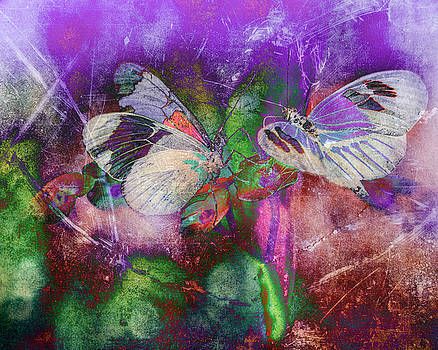 Butterflies 1 by Jerri Moon Cantone
