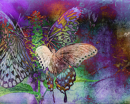 Butterflies 2 by Jerri Moon Cantone