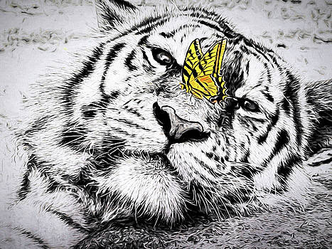 Butterfly Bravery by Diane Schuster