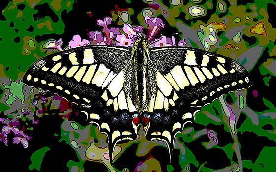 Butterfly by Charles Shoup
