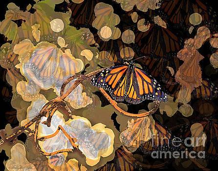 Butterfly Creative Art by Luana K Perez