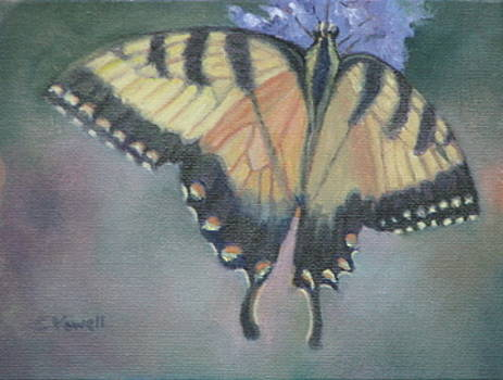 Butterfly by Cynthia Vowell