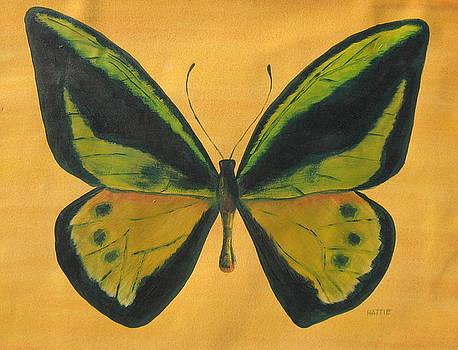 Butterfly by Marsha Elliott