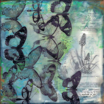 Butterfly migration by Brenda Erickson