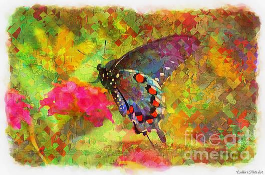 Butterfly on Lantana - Digital Paint by Debbie Portwood