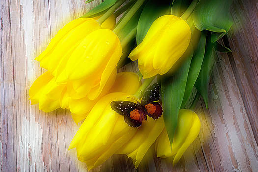 Butterfly On Yellow Tulips by Garry Gay